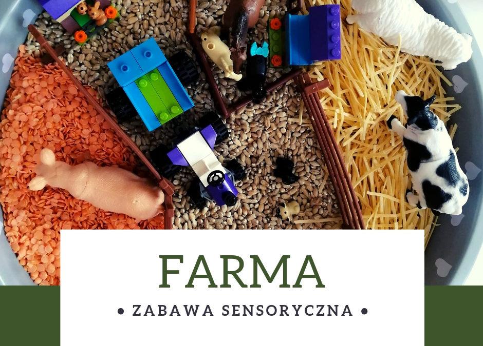 Zwierzęta na wsi- zabawa sensoryczna