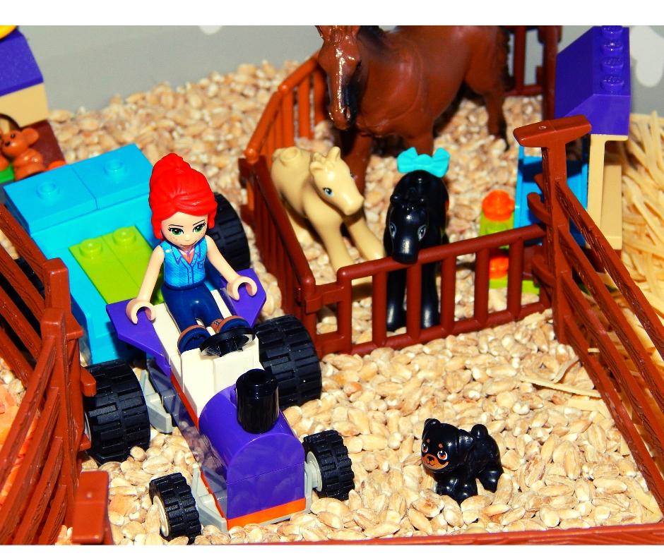 zwierzęta na wsi -zabawa sensoryczna