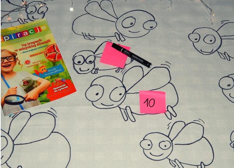 Polowanie na muchy- gra matematyczna