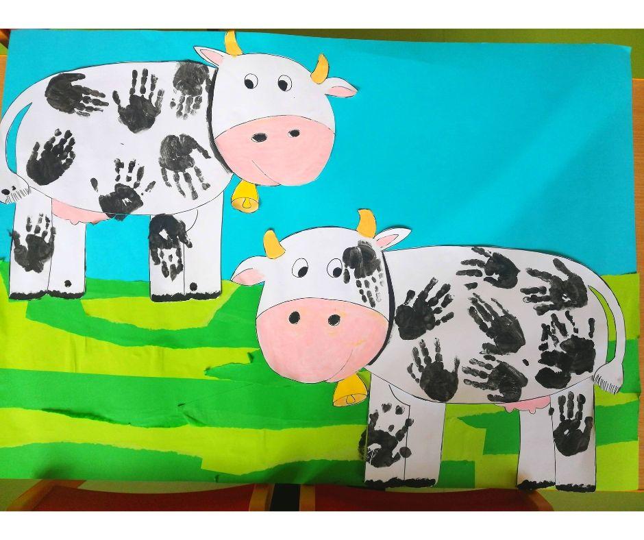 krowa nawsi przedszkole