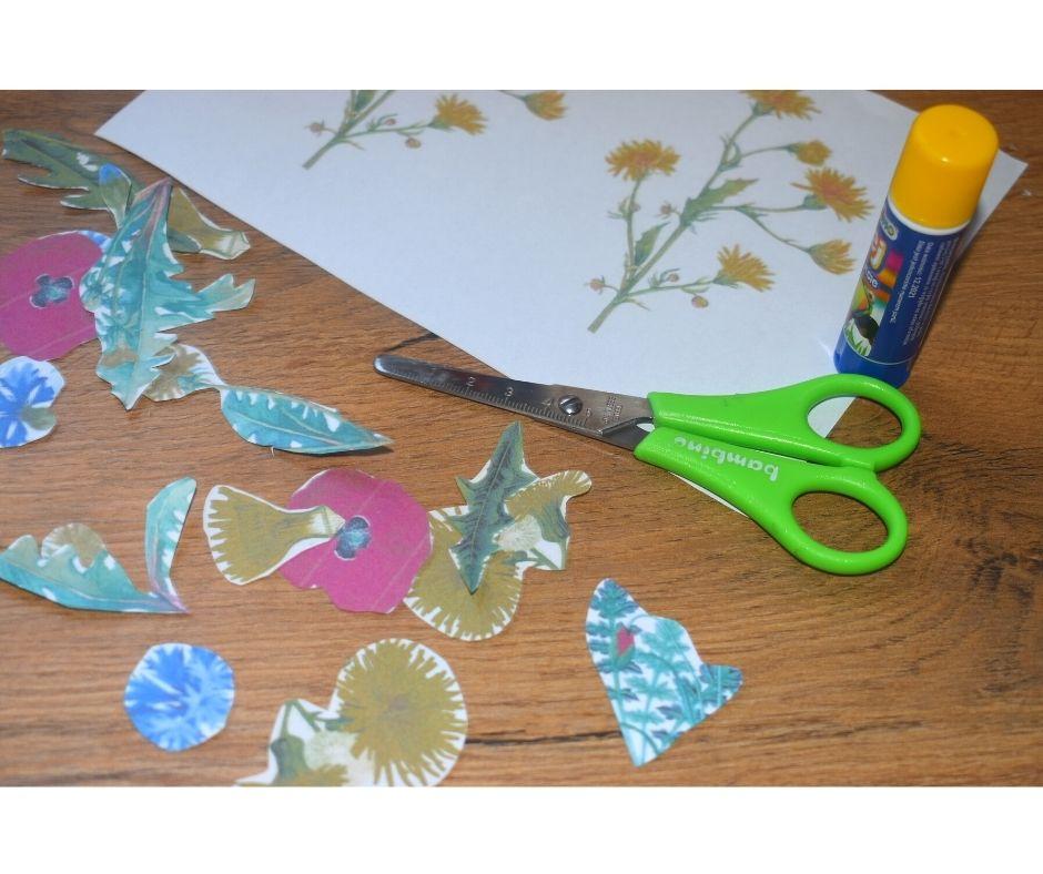 polne kwiaty nałące praca plastyczna