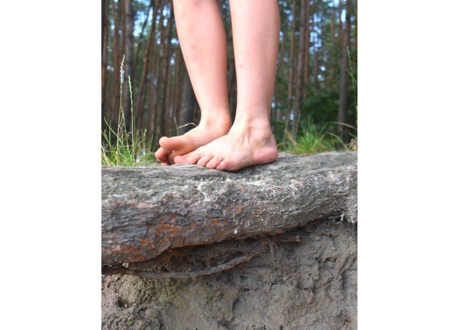 Naturalna ścieżka sensoryczna