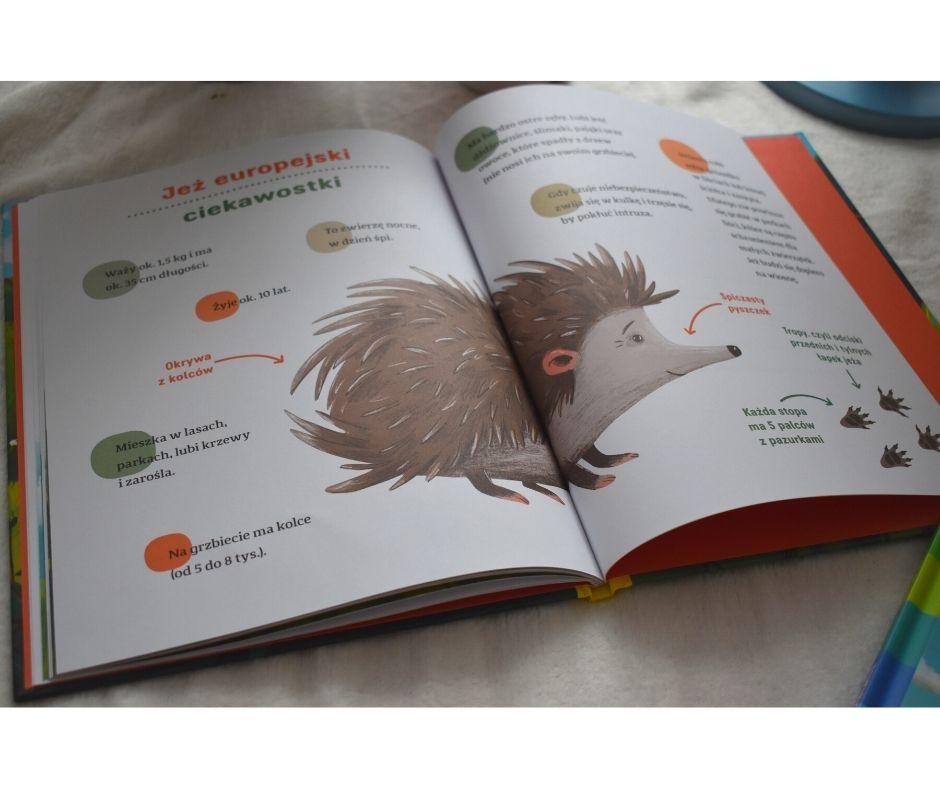 Książki oekologii
