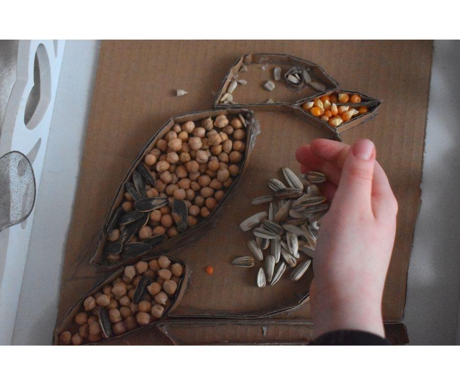 ptaki zimą wPolsce wróbel zabawa zajęcia dla dzieci